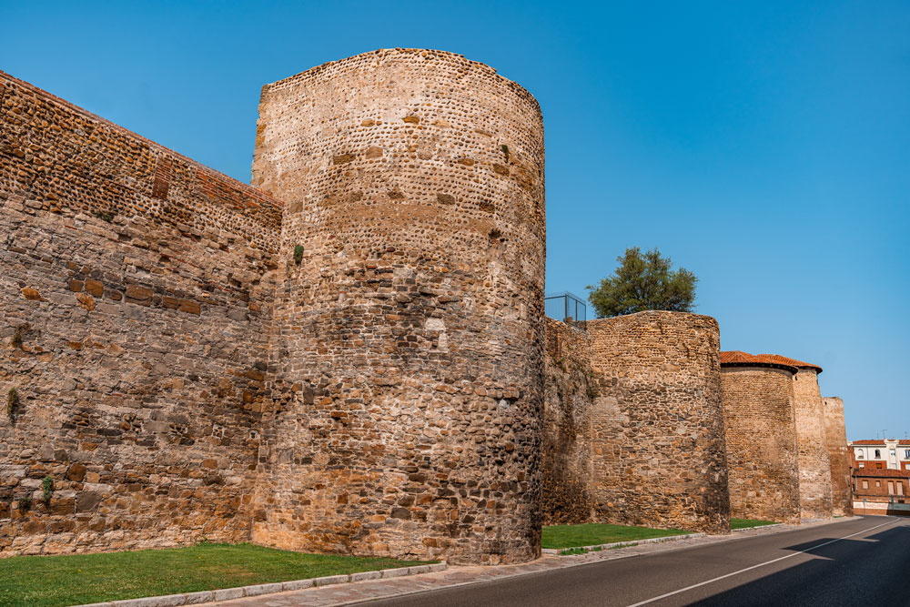 Medieval Wall of Leon