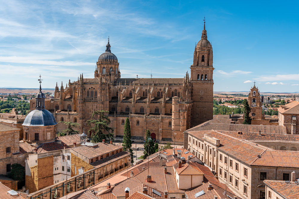 Epic view to the Salamanca Cathedral from La Clerecia Tower